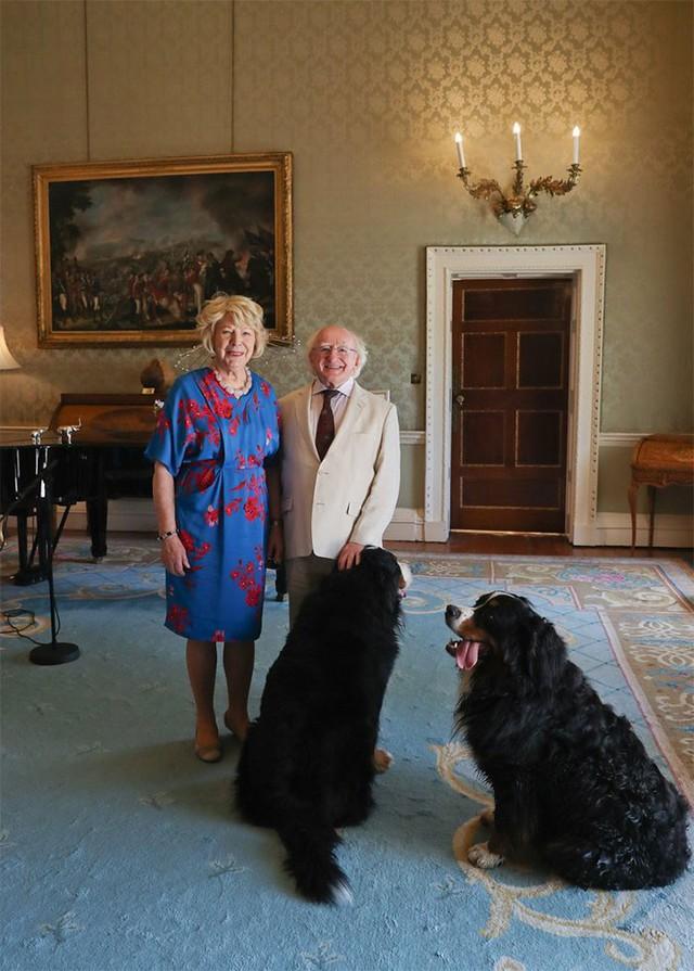 Đi đâu cũng dắt theo chó cưng, lâu lâu lại ngồi xe BMX: Những hình ảnh chứng minh Tổng thống Ireland là nguyên thủ dễ thương nhất thế giới - Ảnh 10.