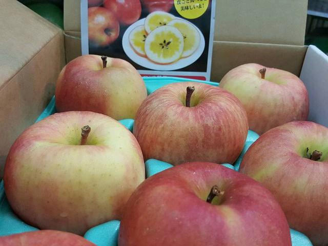 Tiết lộ về loại táo mật bạc triệu đang được săn đón, luôn trong tình trạng hết hàng - Ảnh 2.