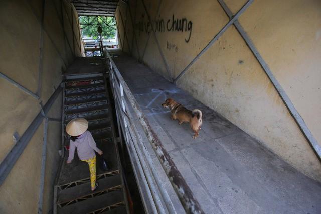 Cận cảnh những khu tạm cư ở Thủ Thiêm - Ảnh 3.