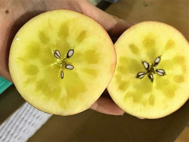 Tiết lộ về loại táo mật bạc triệu đang được săn đón, luôn trong tình trạng hết hàng - Ảnh 3.
