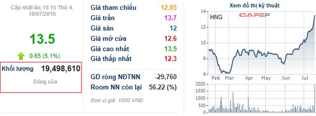 Bộ đôi cổ phiếu HAGL tăng giá mạnh mẽ, xuất hiện nhiều giao dịch với khối lượng lớn - Ảnh 1.