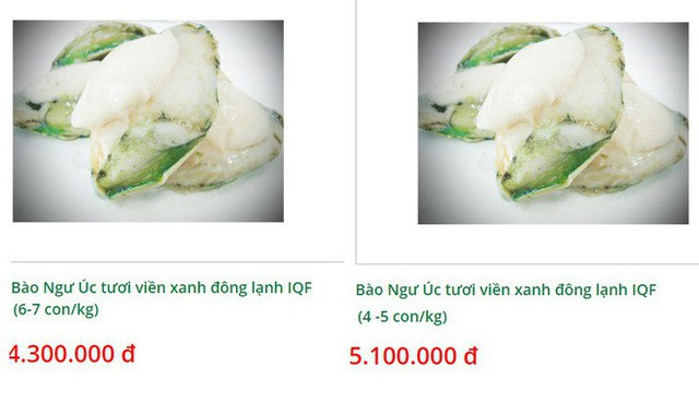 Bào ngư viền xanh 7 triệu đồng/kg, đắt bỏng tay nhà giàu vẫn chi tiền mua tẩm bổ - Ảnh 3.