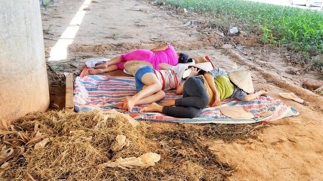 Hà Nội: Người dân trải bạt ngủ trưa dưới gầm cầu để tránh nắng - Ảnh 8.