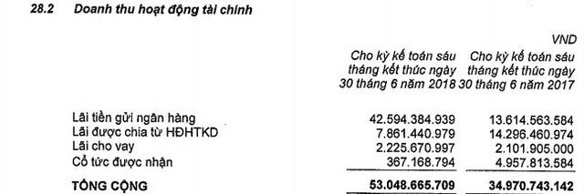 Nam Long (NLG): Có 2.600 tỷ đồng gửi ngân hàng, 6 tháng lãi gần 300 tỷ đồng - giảm 24% so có cộng kỳ - Ảnh 1.