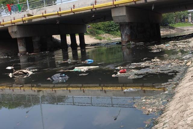 """Sông Tô Lịch """"hồi sinh"""" sau những ngày Hà Nội mưa lớn - Ảnh 9."""