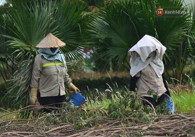 Hà Nội: Mặt đường bốc hơi dưới cái nắng nóng 40 độ, công nhân công ty cây xanh phải che lá chống nắng - Ảnh 6.