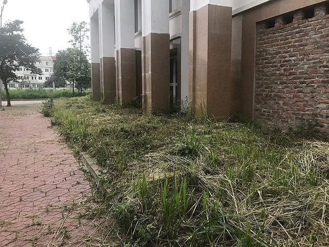 Nhiều thành thị bỏ hoang sau 10 năm Hà Nội mở rộng - Ảnh 8.