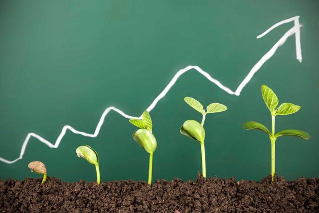 4 bài học khó khăn mà bất cứ doanh nhân thành công nào đều phải trải qua - Ảnh 2.