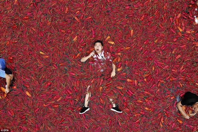 Nhiệt độ lên đến gần 40 độ C, Trung Quốc vẫn tổ chức cuộc thi ngâm mình ăn ớt và tìm được quán quân - Ảnh 1.