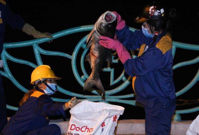 Phun thuốc khử độc ở Hồ Tây sau hàng chục tấn cá chết  - Ảnh 1.