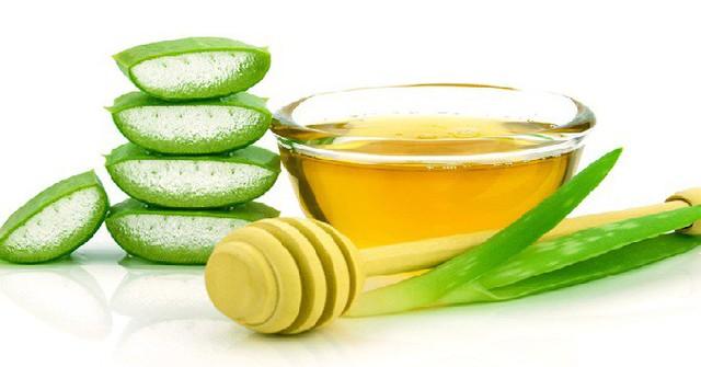 Đánh bay ợ nóng, khó tiêu và hỗ trợ điều trị đau dạ dày với loại cây mọng nước dễ kiếm, rẻ tiền, có sẵn ở Việt Nam  - Ảnh 2.