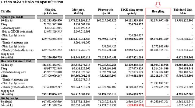 Bán heo, bán đất, bán con… Hùng Vương (HVG) đã có lãi trở lại, quý 3/2018 đạt 30 tỷ đồng lãi ròng hợp nhất - Ảnh 3.