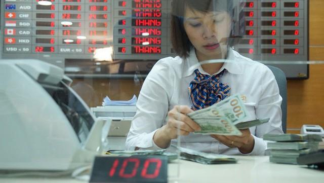 Ngân hàng Nhà nước không phải bán ra hỗ trợ cung ngoại tệ - Ảnh 1.