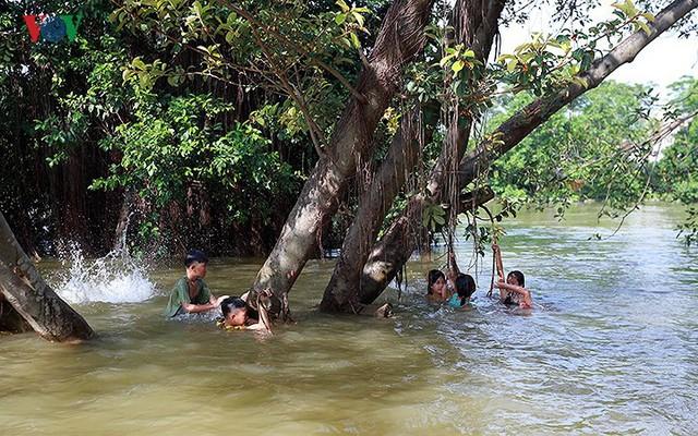 Ái ngại cảnh trẻ em vùng lụt Chương Mỹ vô tư bơi lội trong nước lũ - Ảnh 2.