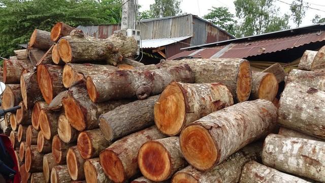 """""""Đột nhập"""" làng nghề làm thớt gỗ trứ danh ở miền Tây - Ảnh 2."""