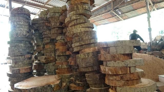 """""""Đột nhập"""" làng nghề làm thớt gỗ trứ danh ở miền Tây - Ảnh 5."""