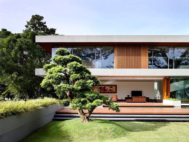 Biệt thự trang trí bằng gỗ ấn tượng - Ảnh 5.