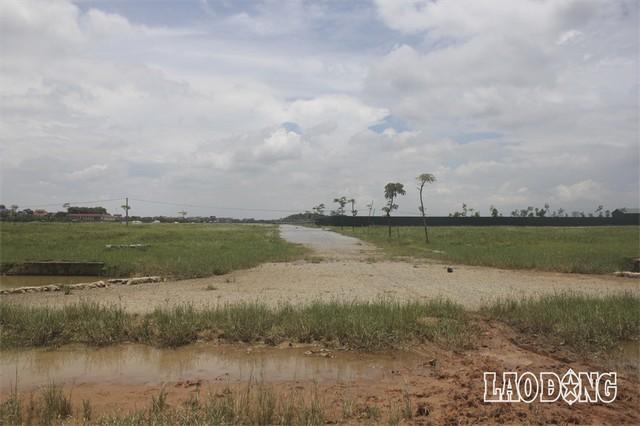 """Hàng chục dự án """"đất vàng nghìn tỉ"""" ở Mê Linh bị bỏ hoang sau 10 năm Hà Nội sáp nhập - Ảnh 4."""