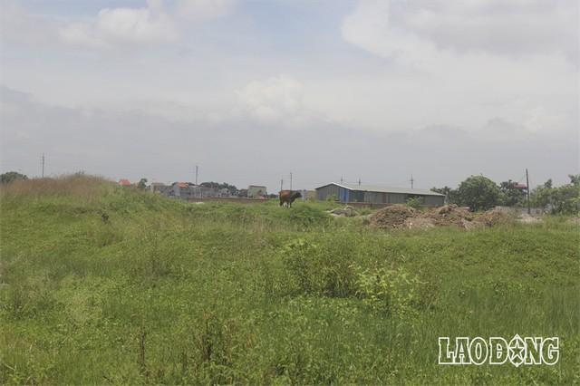 """Hàng chục dự án """"đất vàng nghìn tỉ"""" ở Mê Linh bị bỏ hoang sau 10 năm Hà Nội sáp nhập - Ảnh 9."""