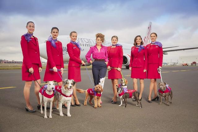 10 hãng hàng không an toàn nhất thế giới sẽ giúp bạn không còn bị ám ảnh bởi tai nạn trên không - Ảnh 1.