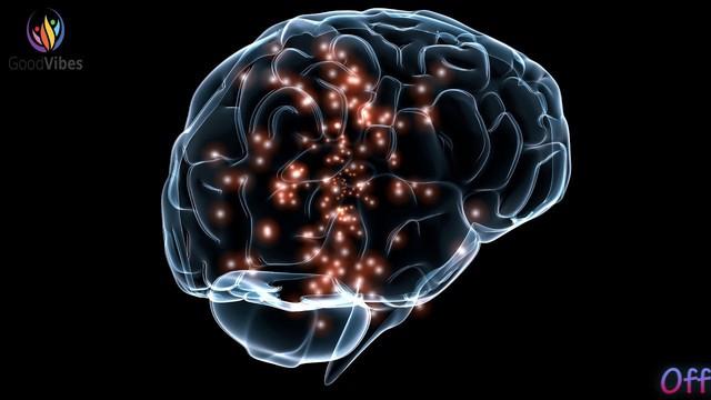Shark Linh nói rất chuẩn khoa học: Trước 25 tuổi nên học càng nhiều càng tốt, vì não bộ của bạn cho phép điều đó - Ảnh 2.