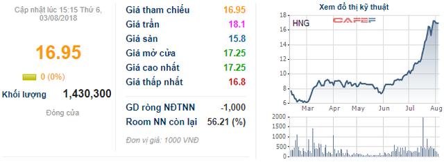 Tổng Giám đốc HAGL: Thaco đã rất dũng cảm khi cam kết đầu tư vào trái phiếu chuyển đổi của HNG - Ảnh 1.