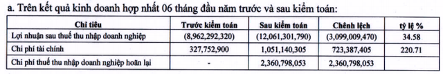 Cao su Quảng Nam (VHG) tăng lỗ thêm 34% sau soát xét - Ảnh 1.