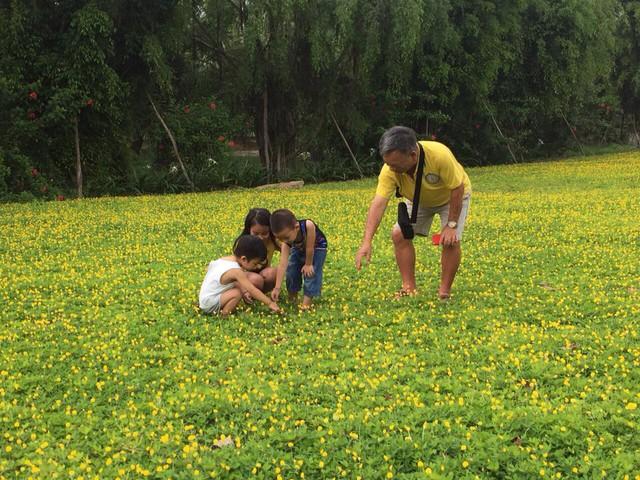 3 địa điểm vui chơi ngay gần Hà Nội, dễ dàng di chuyển cho mọi gia đình dịp 2/9 - Ảnh 1.