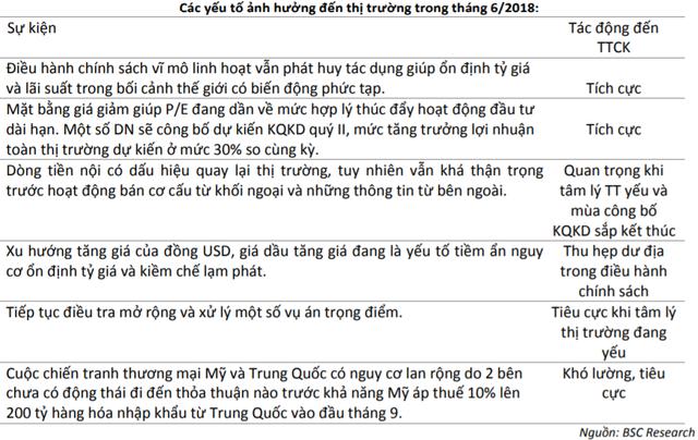 Chứng khoán BSC dự báo VN-Index có thể trở lại mốc 1.000 điểm trong tháng 8 - Ảnh 2.