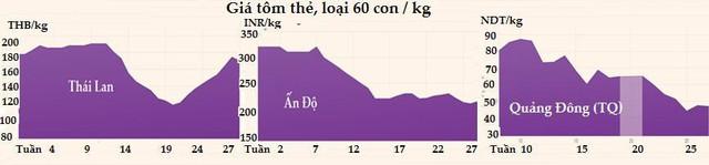 Thị trường hàng hóa ngày 4/8: Dầu, vàng giảm còn sắt thép, gạo, ngũ cốc tăng giá, tôm Trung Quốc đắt nhất châu Á - Ảnh 1.