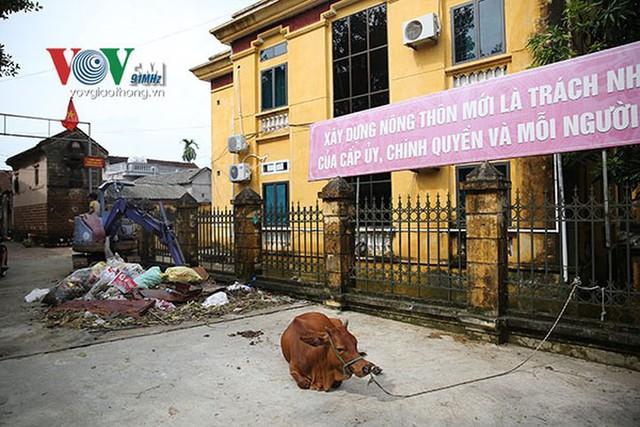 Ảnh: Sau ngập lụt dài ngày, dân Chương Mỹ đối mặt bệnh lở loét da - Ảnh 11.