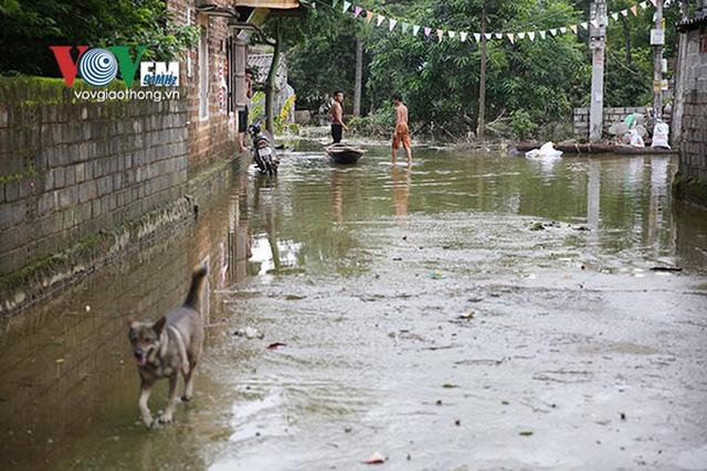 Ảnh: Sau ngập lụt dài ngày, dân Chương Mỹ đối mặt bệnh lở loét da - Ảnh 12.