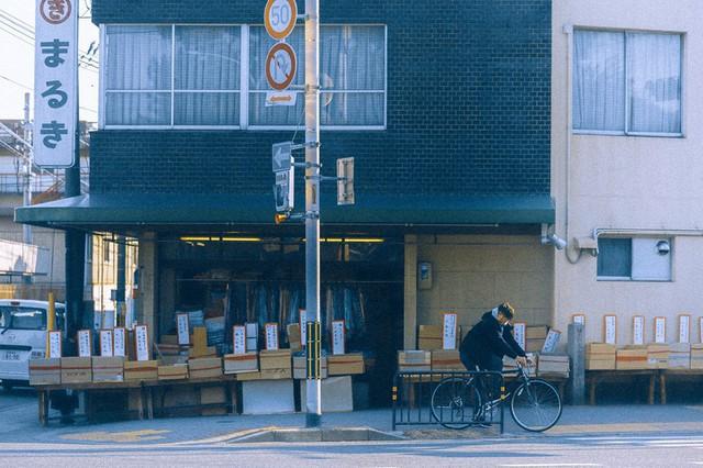 Bộ ảnh ở Kyoto này sẽ cho bạn thấy một Nhật Bản rất khác: Bình yên, dịu dàng và đẹp như những thước phim điện ảnh - Ảnh 20.