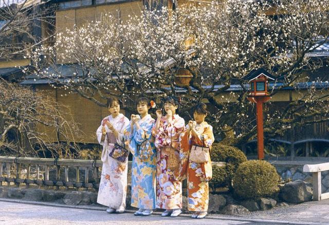 Bộ ảnh ở Kyoto này sẽ cho bạn thấy một Nhật Bản rất khác: Bình yên, dịu dàng và đẹp như những thước phim điện ảnh - Ảnh 3.