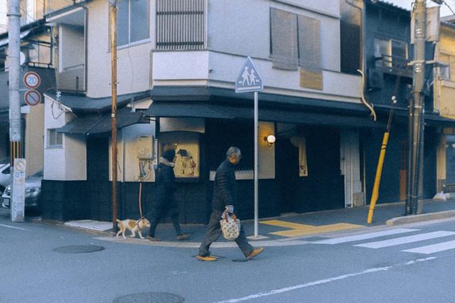 Bộ ảnh ở Kyoto này sẽ cho bạn thấy một Nhật Bản rất khác: Bình yên, dịu dàng và đẹp như những thước phim điện ảnh - Ảnh 10.