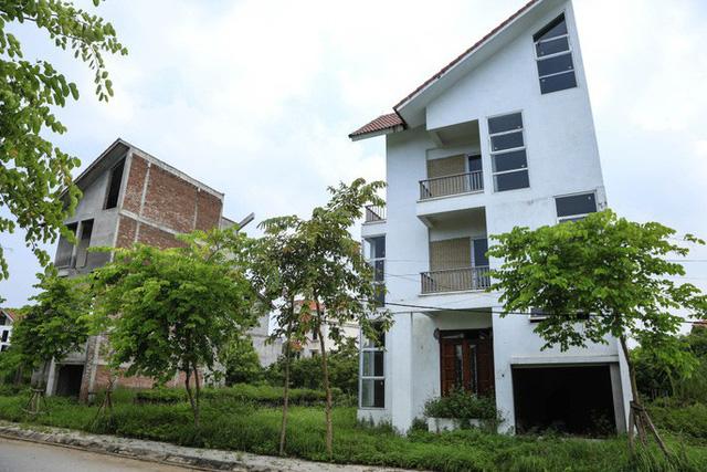 Cận cảnh dự án biệt thự 2.000 tỉ đồng bỏ hoang của Lã Vọng - Ảnh 2.