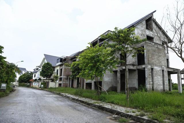 Cận cảnh dự án biệt thự 2.000 tỉ đồng bỏ hoang của Lã Vọng - Ảnh 3.
