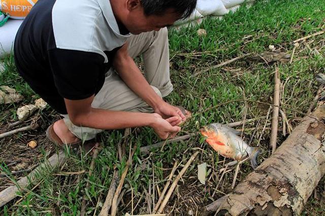 Hà Nội: Nước sông Bùi rút sâu, người dân ra đê câu cá  - Ảnh 12.