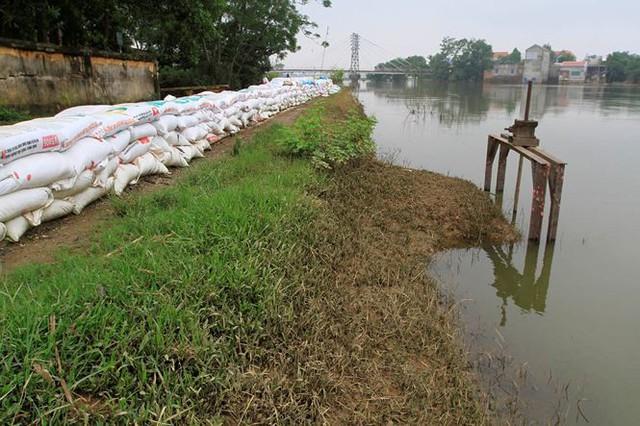 Hà Nội: Nước sông Bùi rút sâu, người dân ra đê câu cá  - Ảnh 5.
