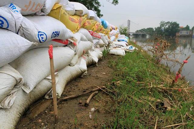 Hà Nội: Nước sông Bùi rút sâu, người dân ra đê câu cá  - Ảnh 8.