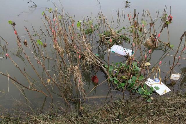 Hà Nội: Nước sông Bùi rút sâu, người dân ra đê câu cá  - Ảnh 9.