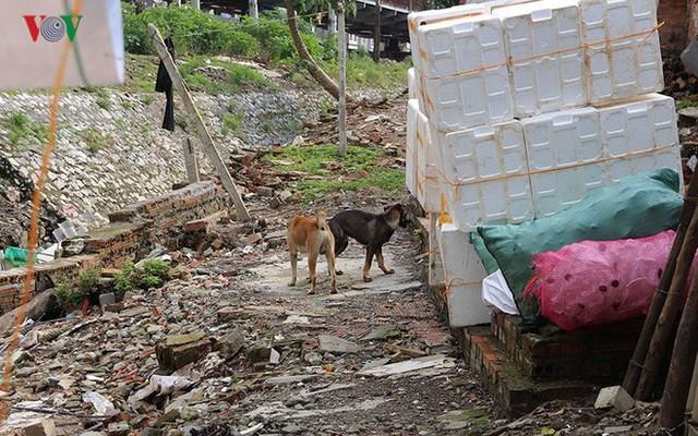 Rùng mình cảnh sống trong rác dưới chân cầu Long Biên - Ảnh 10.