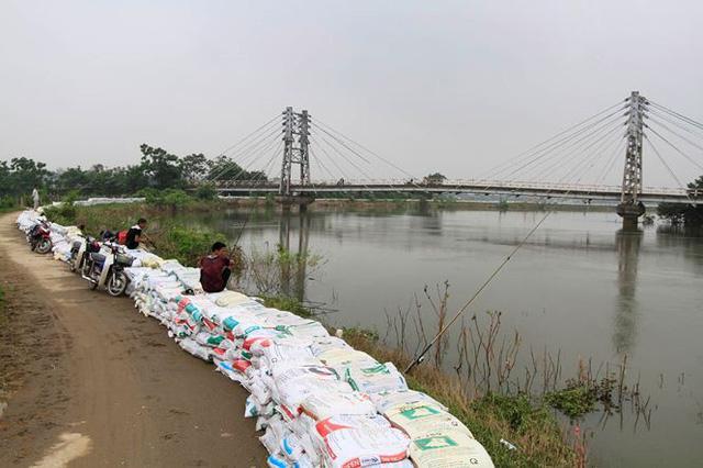 Hà Nội: Nước sông Bùi rút sâu, người dân ra đê câu cá  - Ảnh 10.