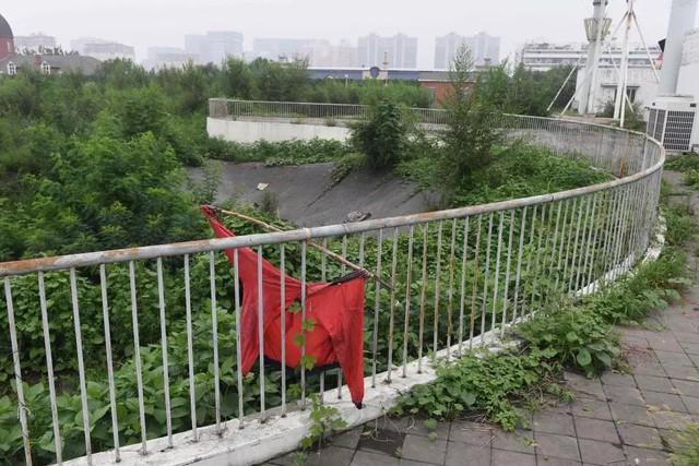 10 năm nhìn lại sân vận động Tổ chim Olympic Bắc Kinh 2008: Hoang tàn đến ám ảnh, niềm tự hào giờ chỉ còn là nỗi tiếc nuối - Ảnh 13.