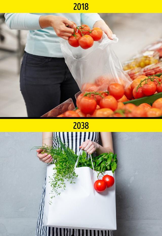 Những vật dụng quen thuộc trong cuộc sống hàng ngày sẽ biến mất trong 20 năm nữa - Ảnh 7.