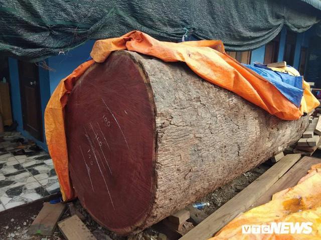 Sàn gỗ lim cầu đi bộ siêu sang ở Huế rạn nứt: Giám đốc trả lời báo chí bị đình chỉ - Ảnh 2.