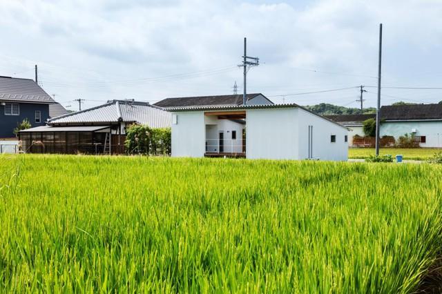 Học một sốh thiết kế ngôi nhà cấp 4 tiện nghi của người Nhật - Ảnh 1.