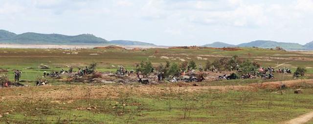 Người dân Phú Yên đổ xô đào đá đen bán giá 4 triệu đồng/kg - Ảnh 1.