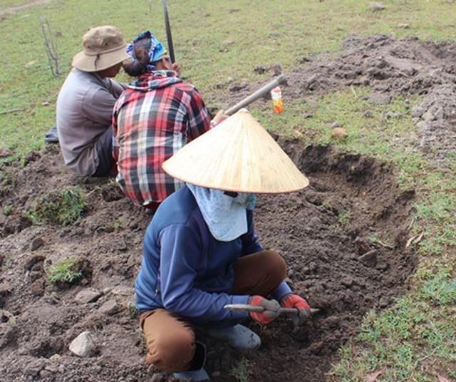 Người dân Phú Yên đổ xô đào đá đen bán giá 4 triệu đồng/kg - Ảnh 5.