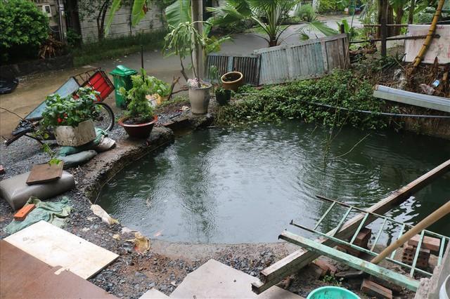 Vì sao khu biệt thự hạng sang bậc nhất Sài Gòn bỏ hoang phí nhiều năm? - Ảnh 4.